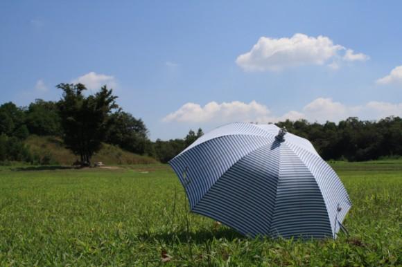 日傘選びのポイント