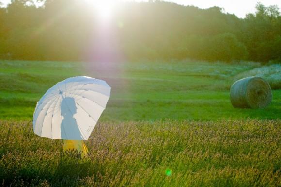 日傘は機能性で選ぶ派のあなた