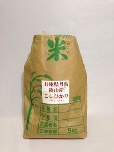 兵庫県 特A米 コシヒカリ