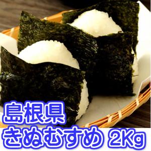 鳥取県 特A米 きぬむすめ