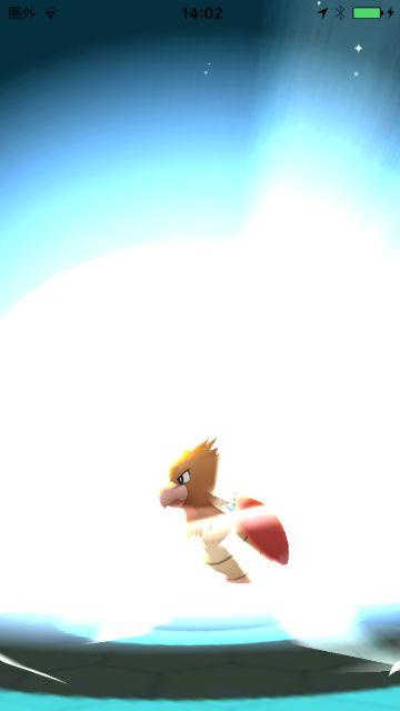 ポケモンGO オニスズメ進化